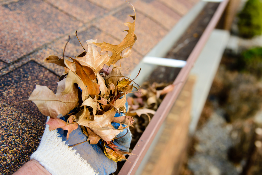 Gutter cleaning Lilydale 3140